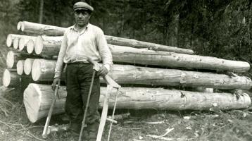 Support Activities for Lumberjacks