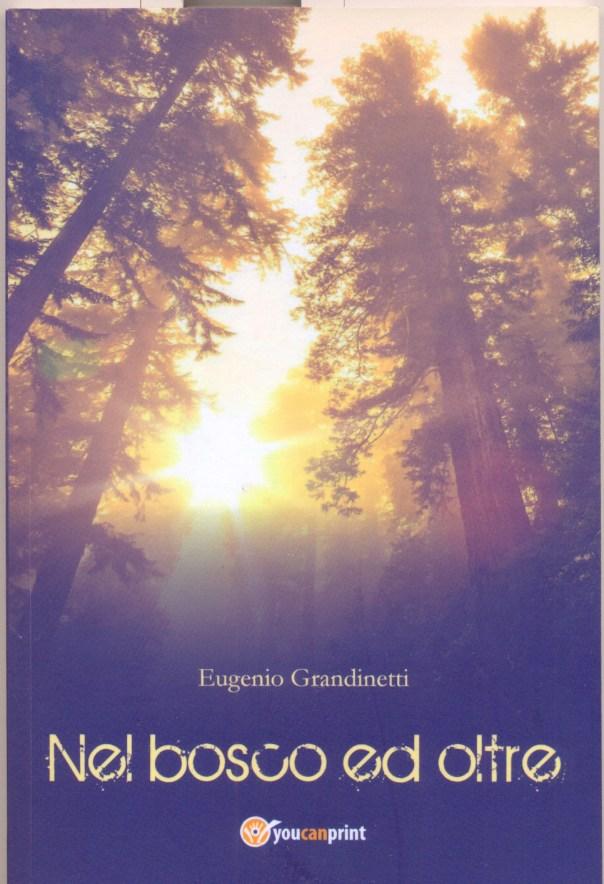 Grandinetti copertina Nel bosco e oltre0001
