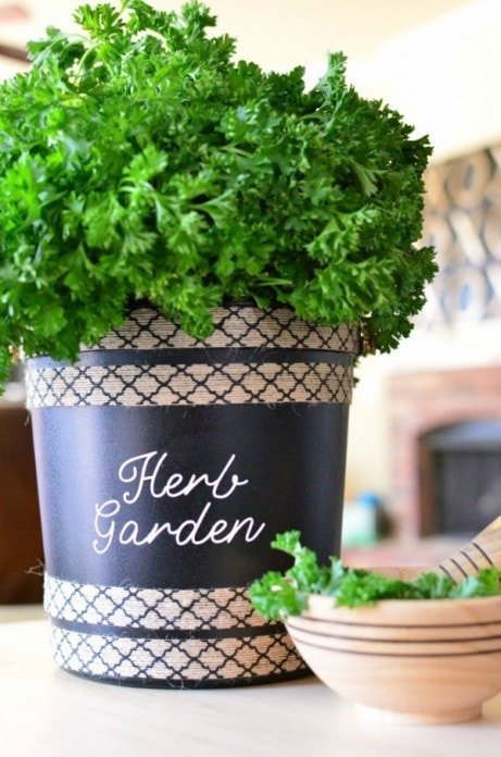 Making an Herb Garden from Upcycled / Repurposed Bucket