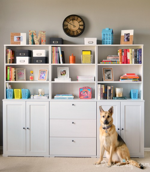 Bookcases in Office
