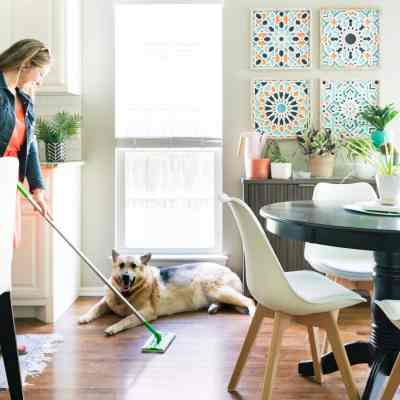 Wood floors being cleaned from dog hair with Swiffer
