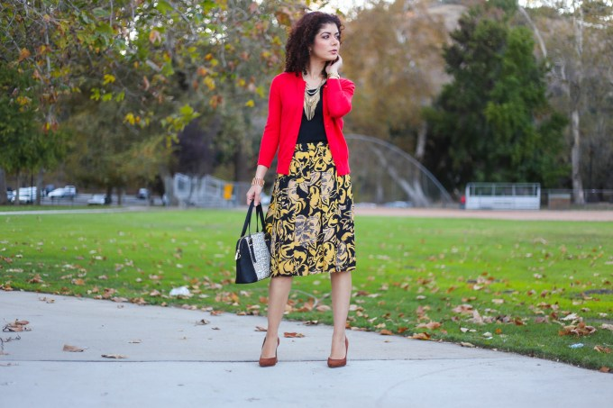 Target carwash skirt with mustard yellow and red