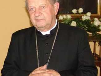 Kardynał Dziwisz w Chicago