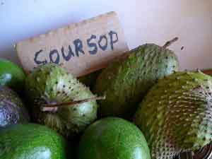 Soursop Fruit 100 Fold Stronger At Killing Cancer Than Chemotherapy
