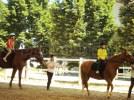 Equitazione - Centro estivo Full Time - San Lazzaro