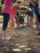 Pet Education bologna