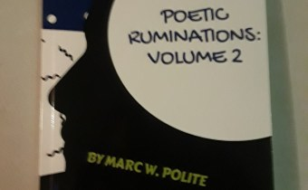 Poetic Ruminations: Volume 2 is Now Available!