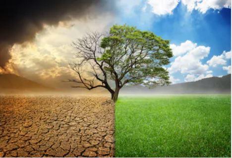 Clima: Biden annuncia un cambio radicale, mentre il mondo si dice preoccupato dall'emergenza globale