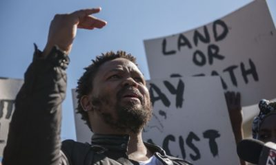 "Andile Mngxitama: Human Rights Commission a ""lap dog of white fears"""