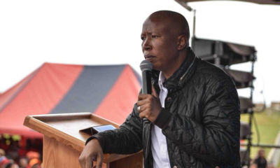 Floyd Shivambu not going anywhere, says EFF's Julius Malema