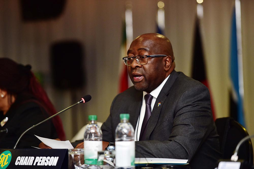 Nhlanhla Nene facilitated state capture – Economic Freedom Fighters