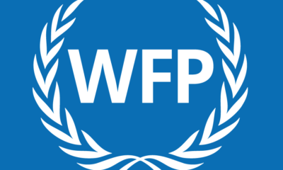 Fourty-five million people face food insecurity in Southern Africa, WFP reports