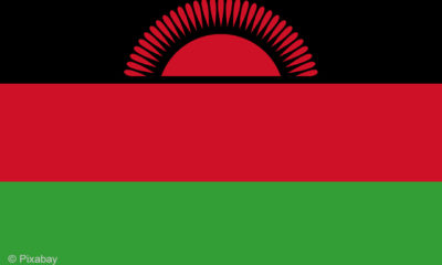 Malawi: New leader scraps boards of sixty parastatals