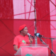Court issues arrest warrant for Julius Malema