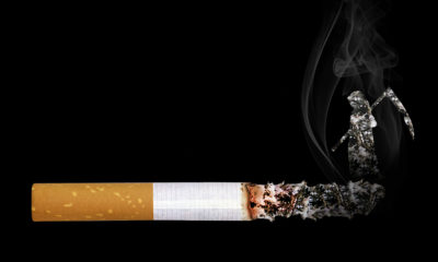 'Tobacco Free Nigeria' campaign reveals that 25 000 underage Nigerians use tobacco daily