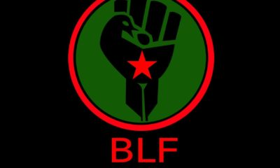Equality Court: BLF's slogan on land amounts to hate speech