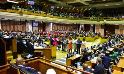 Opposition parties criticize Ndobe's appointment as KZN deputy speaker