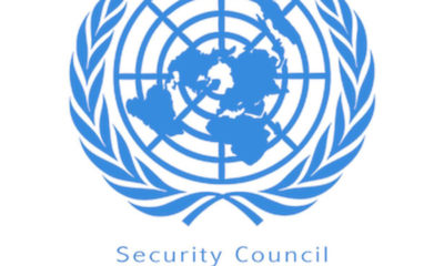 Israel supports Kenya 's UN Security council bid