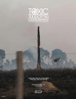 b2ap3_thumbnail_Cover-Toxic-Amazon.png