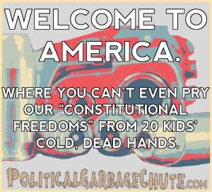 GUNS_COLD DEAD HANDS