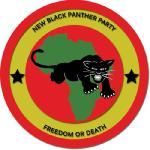 New-Black-Panthers-Logo
