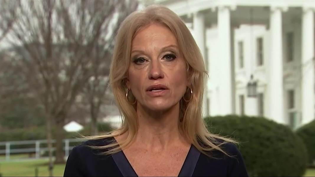 Kellyanne Conway Says The Trump Economy Can 'Easily Handle' 17 Million Americans Filing for 'Alternative Employment'