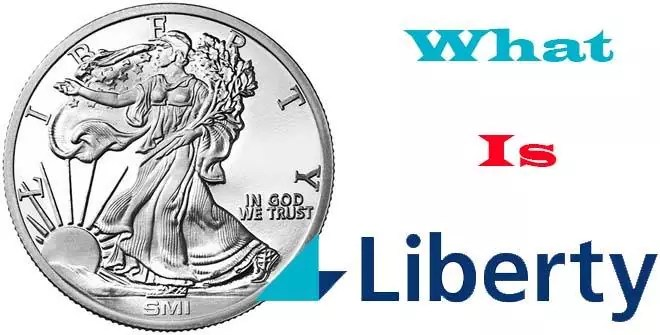 definitions of liberty; Liberty definition and meaning; Liberty Definition, Nature and Theories;