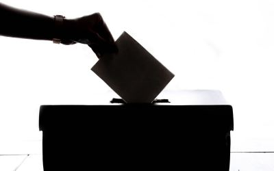 Dysfunction at the Board of Elections