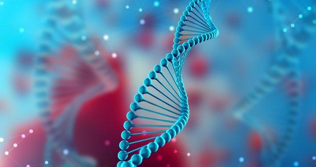 Psikopatolojiler ve genetik