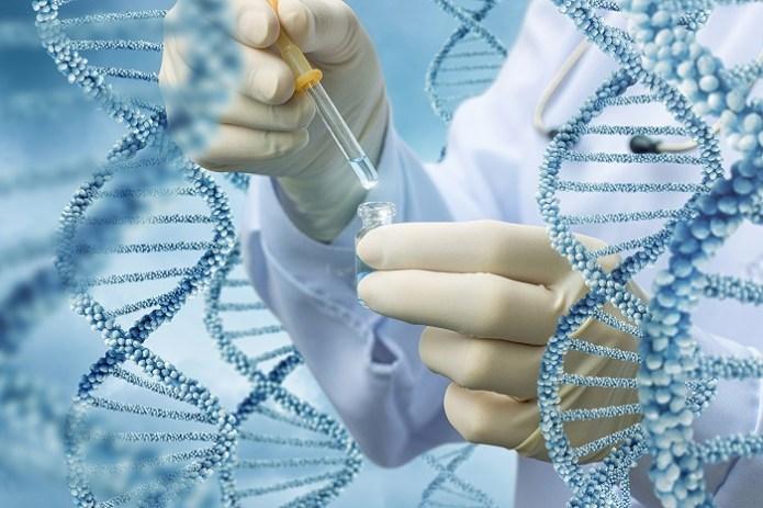 Genetik testler üzerine