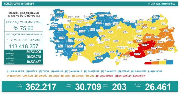 Türkiye'de koronavirüs nedeniyle son 24 saatte 203 kişi hayatını kaybetti, tespit edilen vaka sayısı 30 bin 709 oldu