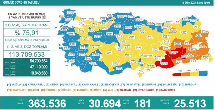 Türkiye'de koronavirüs nedeniyle son 24 saatte 181 kişi hayatını kaybetti, tespit edilen vaka sayısı 30 bin 694 oldu