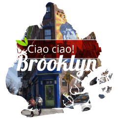 Brooklyn intro graphic