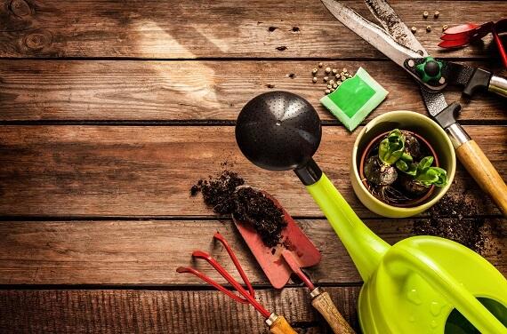Best-Gardening-service
