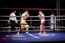 profesjonalna gala bokserska