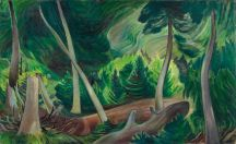 emily-carr-paintings-british-columbia-forest-ago-art-gallery-of-ontario-by-photographer