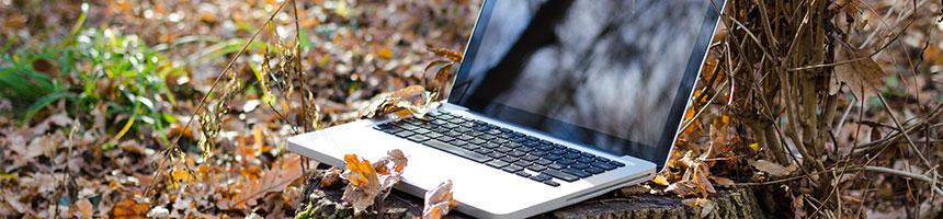 Online-Wahlen in Naturschutzvereinen