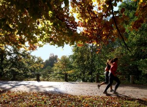 Jogging is a routine you can easily tie new language learning habits to. (Image from freeimages.com)