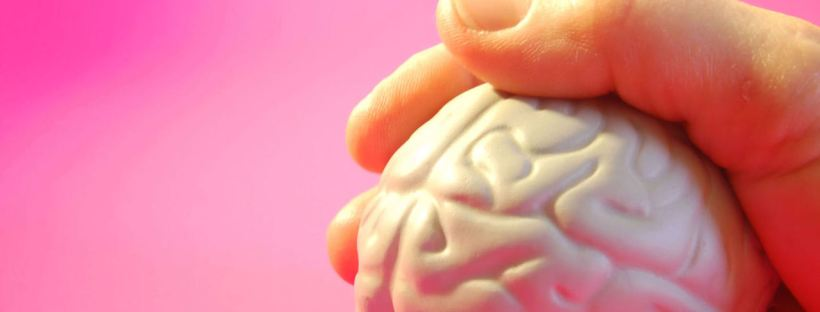 Meta-learning - know your brain (Image from freeimages.com)