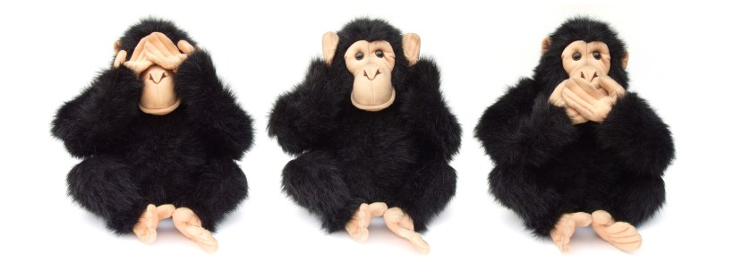 Three plush monkeys in the see no evil, hear no evil, speak no evil poses. Image by freeimages.com