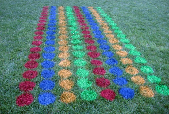 diy twister game spray painted on grass