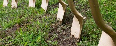 POLYWOOD-Blog-Groundbreaking-Ceremony-Shovels