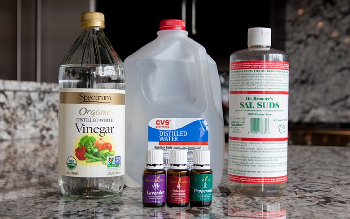 POLYWORLD-Blog-Homemade-All-Purpose-Cleaner-Ingredients