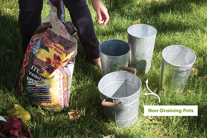 DIY Potted Plants-Choosing-Pots-POLYWOOD