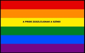 PRIDE zászló