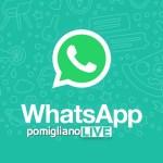 Da oggi pomiglianoLIVE è su WhatsApp!