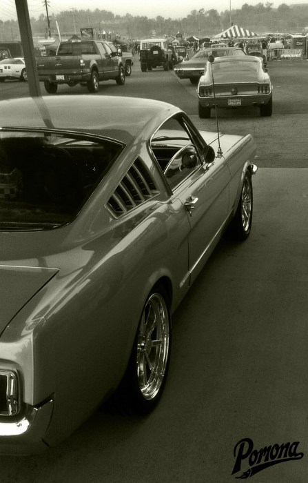 Classic Mustang Fastbacks