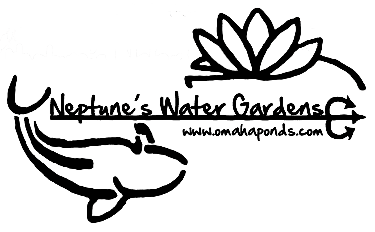 Pond Supplies Pond Fish Water Treatments Omaha Lincoln