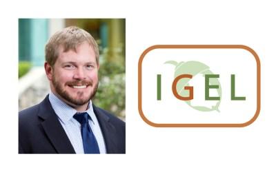 Stephen Bailey joins IGEL Board of Directors