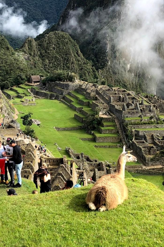 Lost Inka's Empire